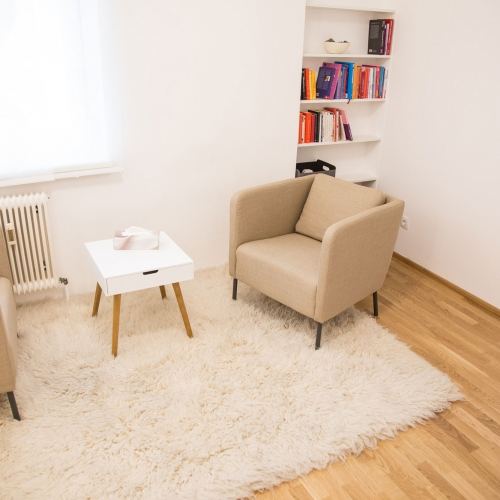 Psychotherapeutische-Praxis-Anja-Gutmann-Graz-2